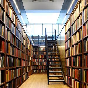 Библиотеки Городища