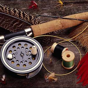 Охотничьи и рыболовные магазины Городища